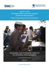 Assessing the economic impacts of internal displacement